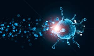 informações sobre coronavírus
